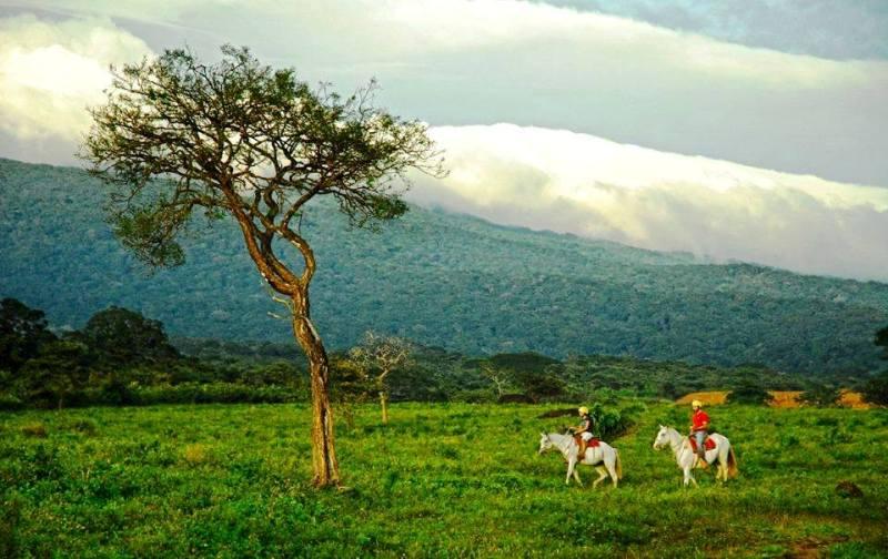 Guanacaste landscape